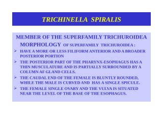Trichinellosis.ppt Oct.2011.ppt