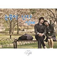 Shin Jae - Tears Are Falling OST 49 Days.mp3